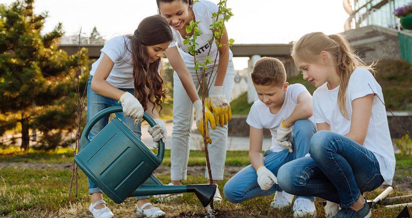 Técnico Superior en Educación y Control Ambiental