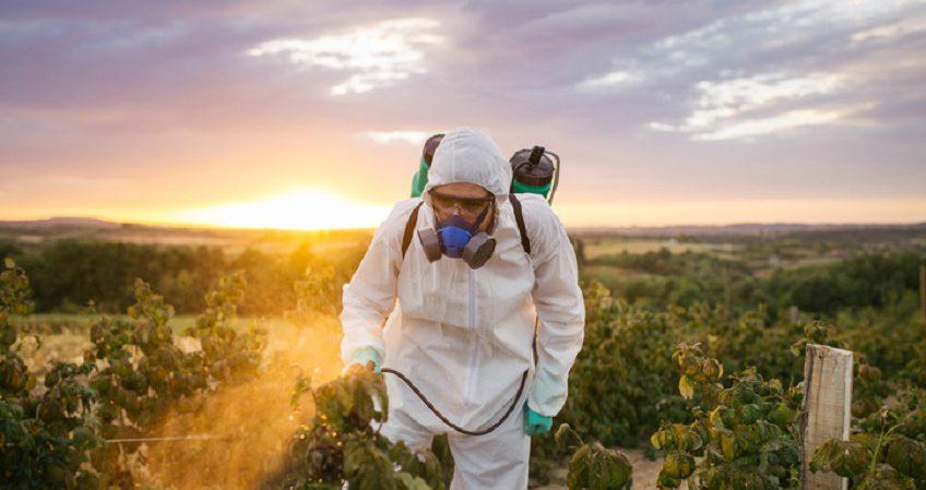 Técnico Superior en Salud Ambiental