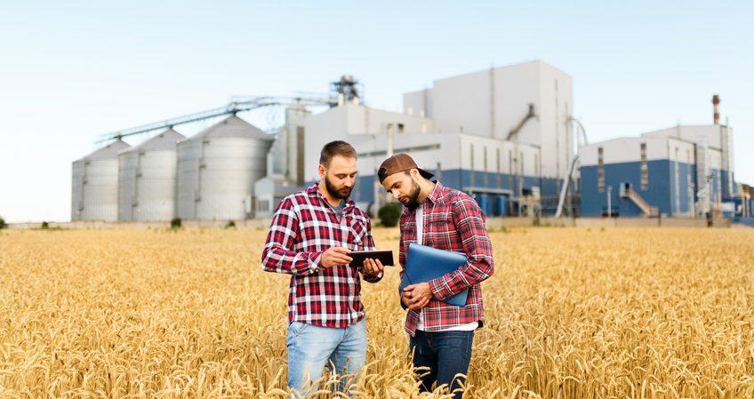 Técnico Superior en Gestión y Organización de Empresas Agropecuarias
