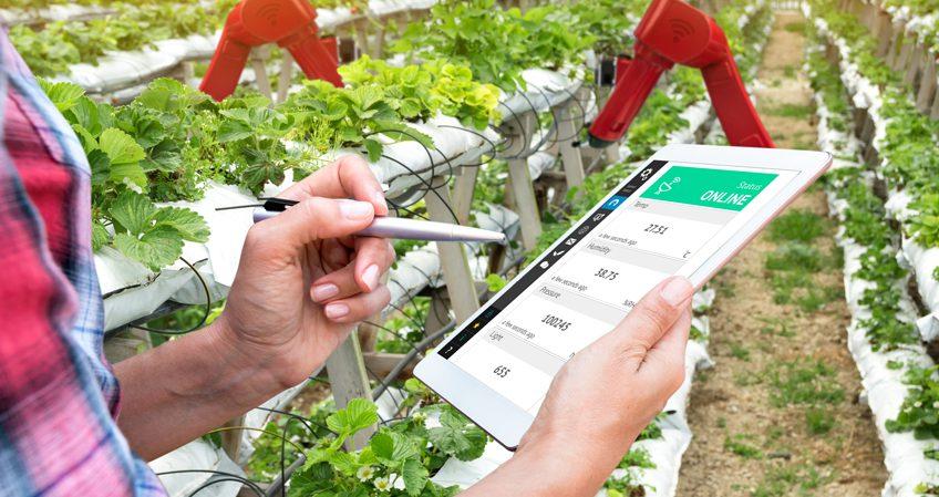 Grado en Ingeniería Agrícola