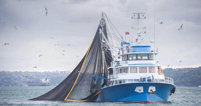 Técnico en Pesca y Transporte Marítimo