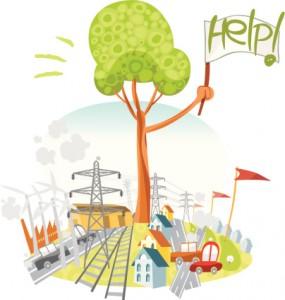 Ciclo Superior en Gestión Forestal y del Medio Natural