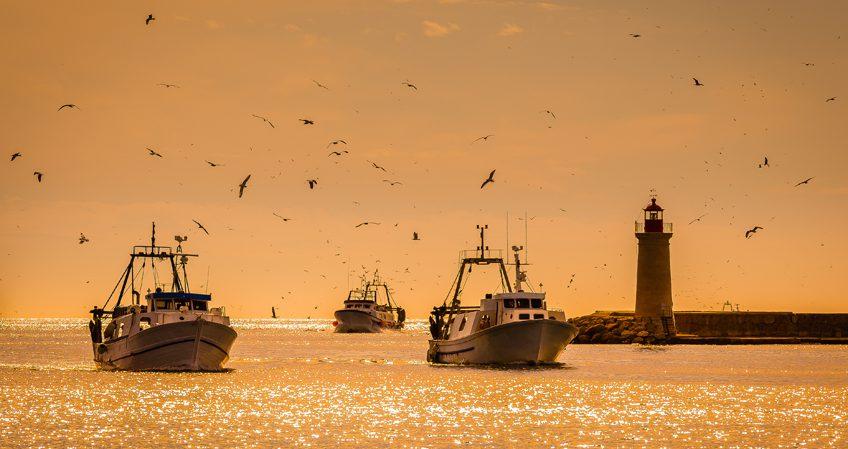 Técnico en Navegación y Pesca de Litoral